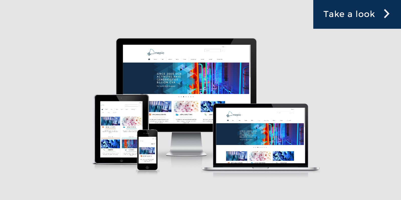 iTCHYROBOT Solutions - Nepic Responsive View